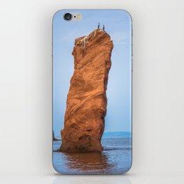 cormorants on the cliff iPhone Skin