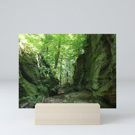 Nelsons Ledges Mini Art Print