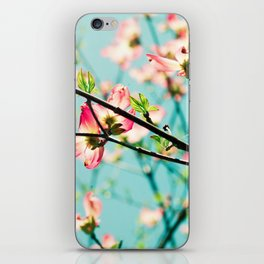 Aqua Spring iPhone Skin