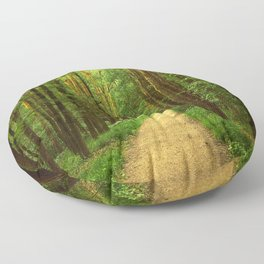 Forest path Floor Pillow
