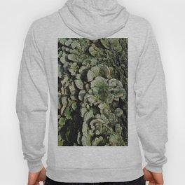 Forest Mushrooms Hoody