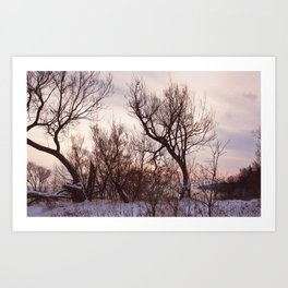 Scarborough Bluffs in Winter on December 27th, 2020. IV Art Print