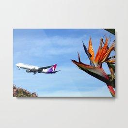 Hawaiian 767 and Bird of Paradise Metal Print