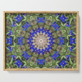 Peacock colors kaleidoscope - Anagallis, Blue pimpernel flowers Serving Tray