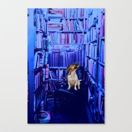 Curiously Blue Canvas Print