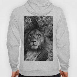The Fearless Lion Hoody