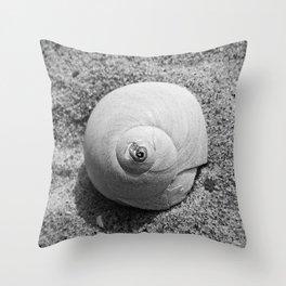 Atlantic Moon Snail Shell Throw Pillow