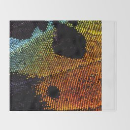 Vibrant Iridescence of The Madagascan Sunset Moth Throw Blanket