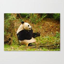 PANDA, yes! Canvas Print