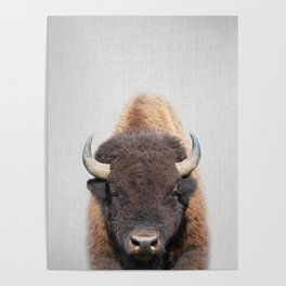 Buffalo - Colorful Poster