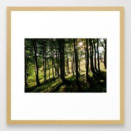 Annaberg, Austrian Alps Framed Art Print