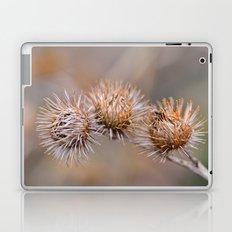 Thorn Pods Laptop & iPad Skin