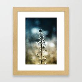 Ametrin Framed Art Print