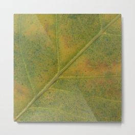 Field of Green #2 Metal Print