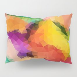 Geometric pattern CL Pillow Sham