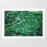 A Sea of Green Art Print