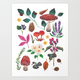 Autumn garden plants Art Print