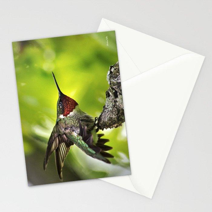 Hummingbird Dominance Stationery Cards