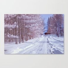 BABY IT'S COLD OUTSIDE II Canvas Print