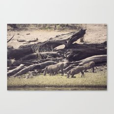 The Praying Beasts Canvas Print