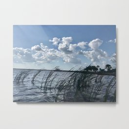 """Florida Marshes"" Photography by Willowcatdesigns Metal Print"