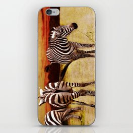 The Zebras iPhone Skin