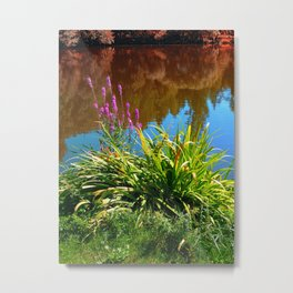 Flowers at the pond Metal Print