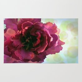 Red Parrot Tulip Rug