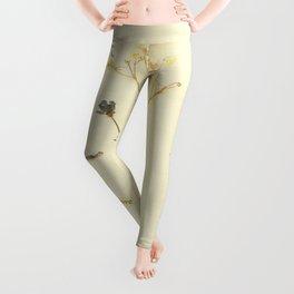 I'm in love Leggings