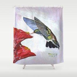 Hummingbird and Cactus Flower Shower Curtain