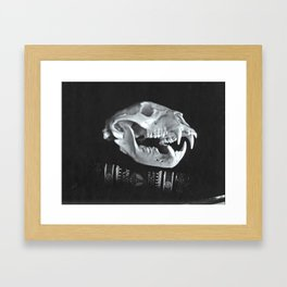 Bear Skull Still Life Framed Art Print