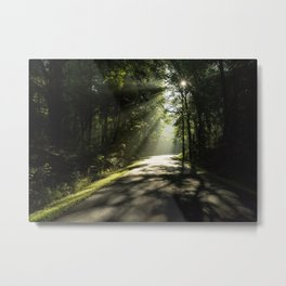 Forest Morning 2 Metal Print