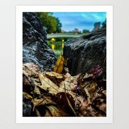 Leave Me Be - Central Park, NYC Art Print