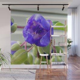 Spiderwort Flower Wall Mural