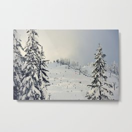 Cold Weather Fun Metal Print