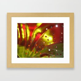 Colander Days1 Framed Art Print