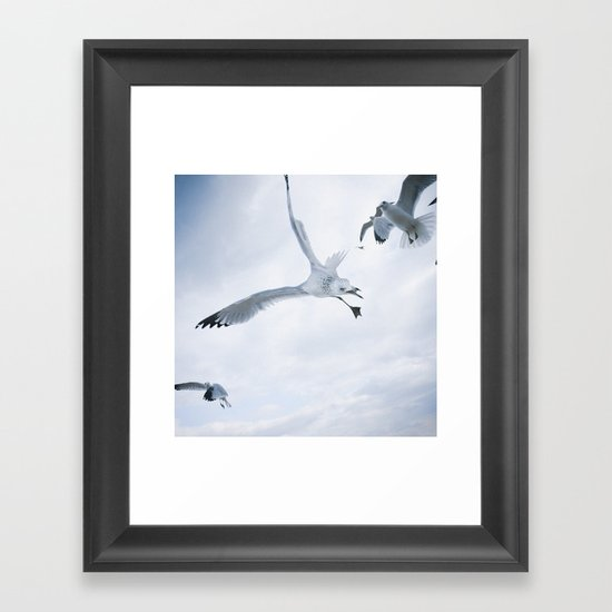 Seagull {Two} Framed Art Print