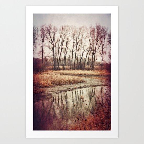 Solitude River Art Print