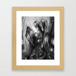 DN001 - Detail 3 Framed Art Print