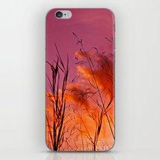 Sundown Silhouettes iPhone & iPod Skin