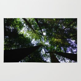 Forest Tree Top Canopy Rug