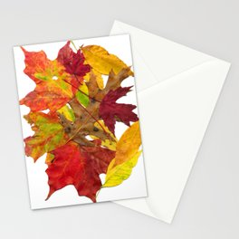 Autumn Fall Leaves Foliage Art Stationery Cards