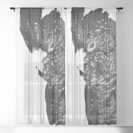 Black and White Cockatoo Illustration Sheer Curtain