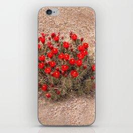 Sandia Cactus Flowers iPhone Skin