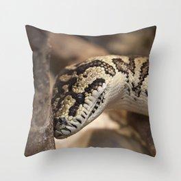 Smiling Python Throw Pillow
