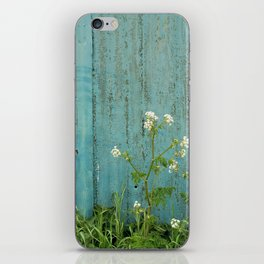 natural wild flowers floral outdoors blue metal fence texture iPhone Skin