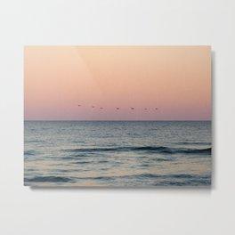 Pelicans at Sunset Metal Print