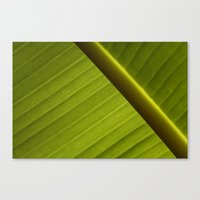banana leaf Canvas Prints featuring Banana Leaf by Maria Heyens
