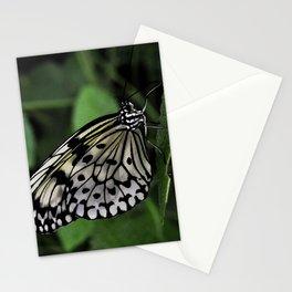 Silk Butterfly Stationery Cards