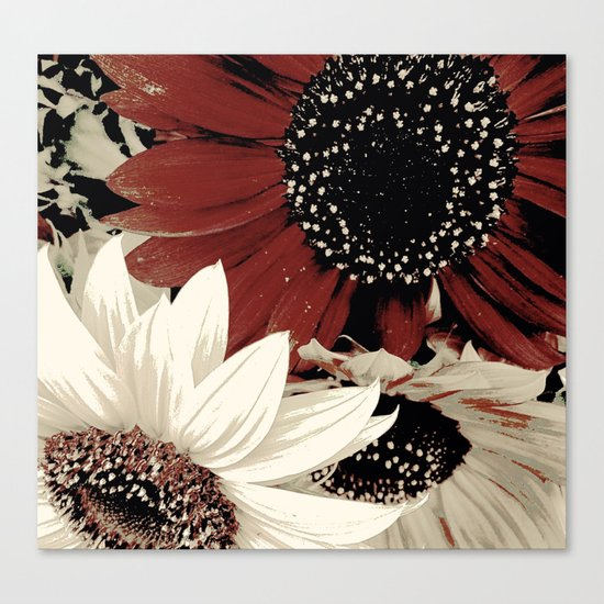 Frosted Sunflowers Canvas Print